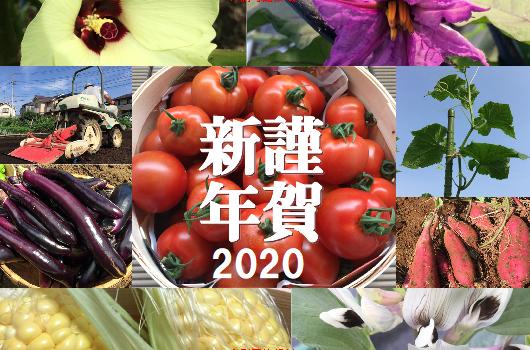年賀状野菜2020.png