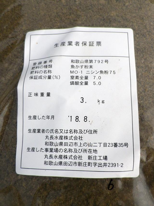 IMGP6149.JPG