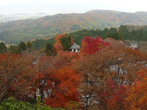 yoshi-ji.jpg
